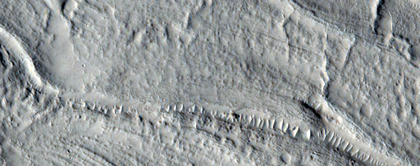 Concentric Crater Fill in the Northern Plains