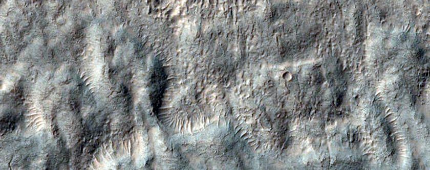 Gullies and Ice-Rich Material