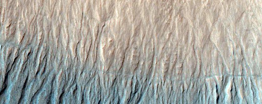 Sample of Niger Vallis