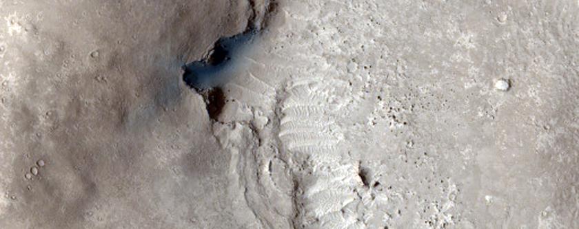 Landslides Along Shoreline in Elysium Planitia