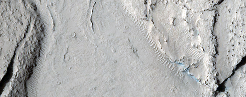 Fractured Mounds at the Southern Edge of Elysium Planitia