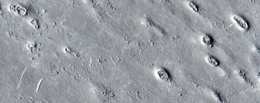 Ring and Cone Structures in Elysium Planitia North of Aeolis Planum