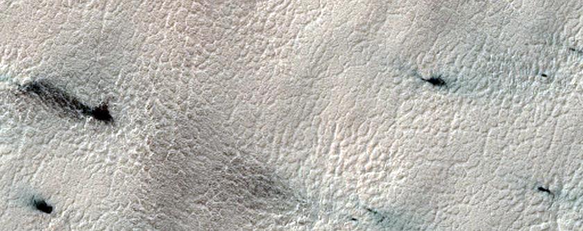 Dust Fans on the Seasonal Carbon Dioxide Polar Cap