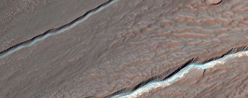 Bright Gully Flows in Hale Crater