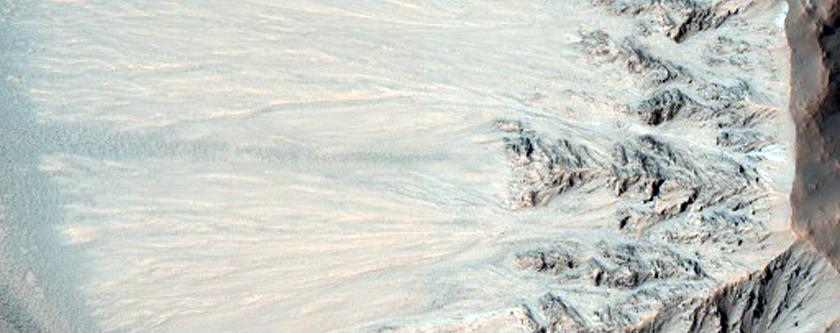 Bright Gully Deposit in Terra Sirenum