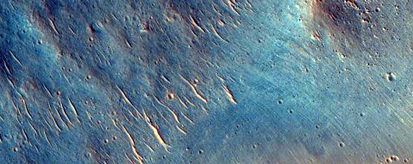 Rotational Landslides or Slumps Along Walls of Bahram Vallis