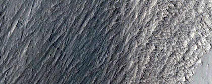 Large Landslide Deposit