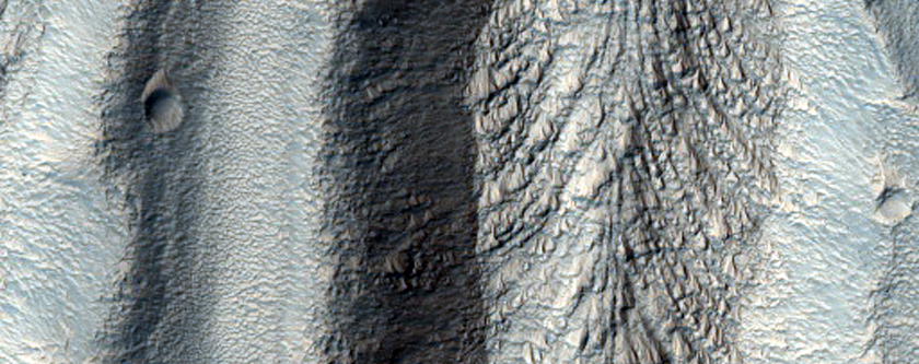 Gullies and Flow Features Along Crater Wall in Eastern Hellas Region