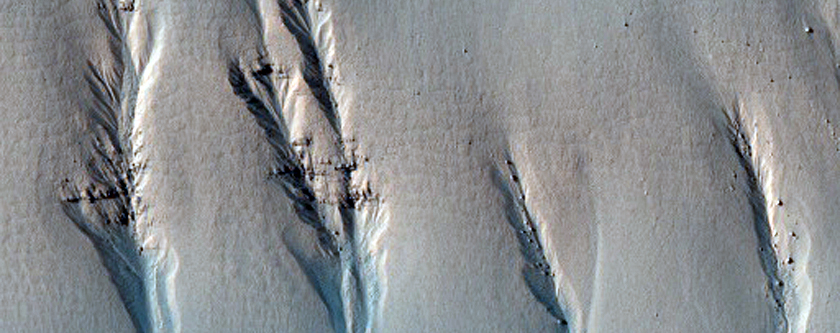Gullies and Concentric Fill in an Unnamed Rampart Crater in Noachis Terra
