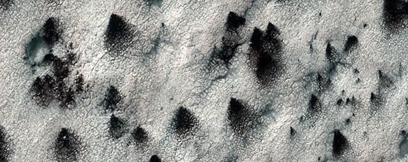 Lizard-Skin Surface Texture