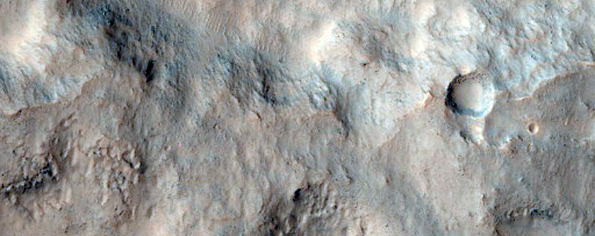 Gullies and Layers in Crater