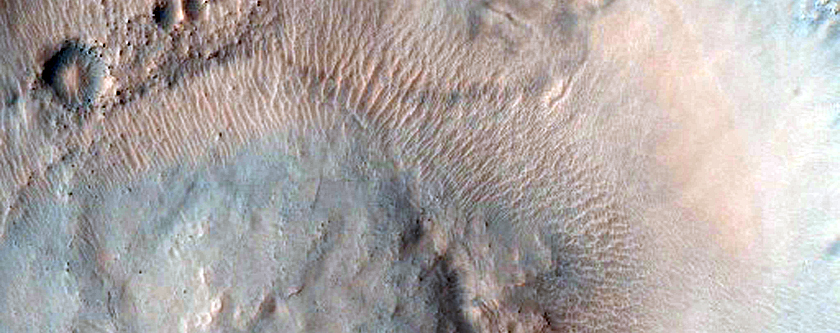 Gullies with Tributary Channels in Gorgonum Chaos Crater