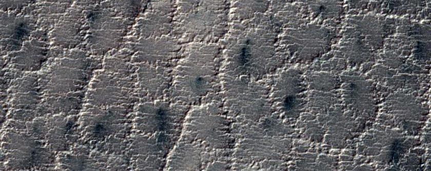 Polygon-Cracked Terrain