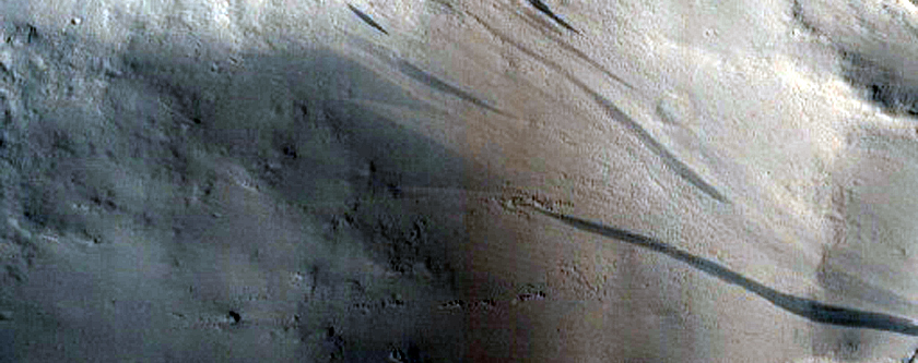Slope Streaks in Marte Vallis