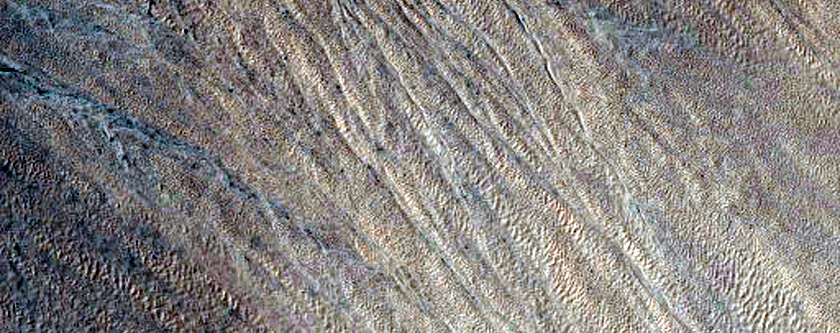 Gullies South of Terra Sirenum