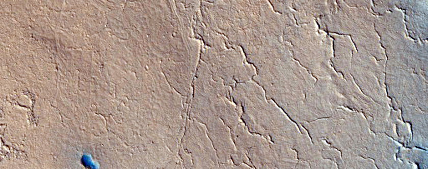 Wrinkle Ridge in Elysium Planitia
