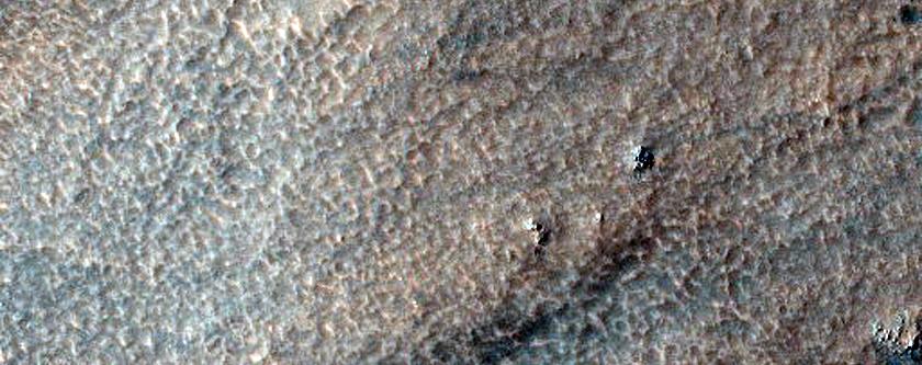 Proposed MSL Rover Landing Site in Hellas Basin/Dao Vallis