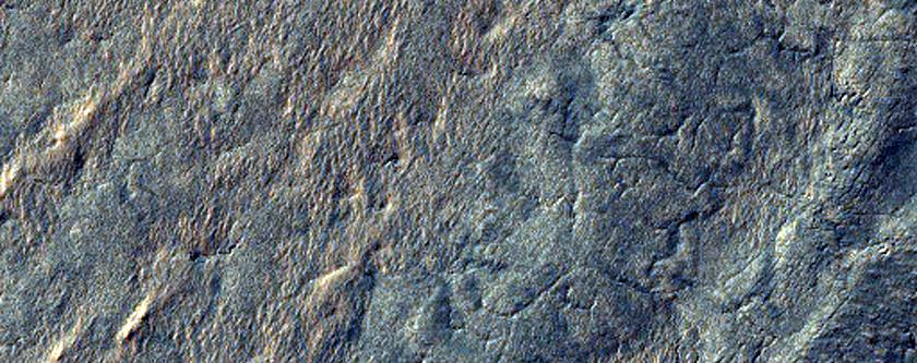 Spring Thaw of the Martian South Polar Cap
