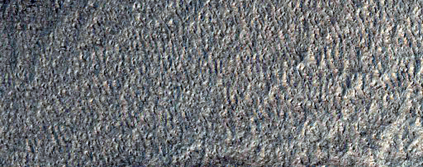 Search for Mars Polar Lander
