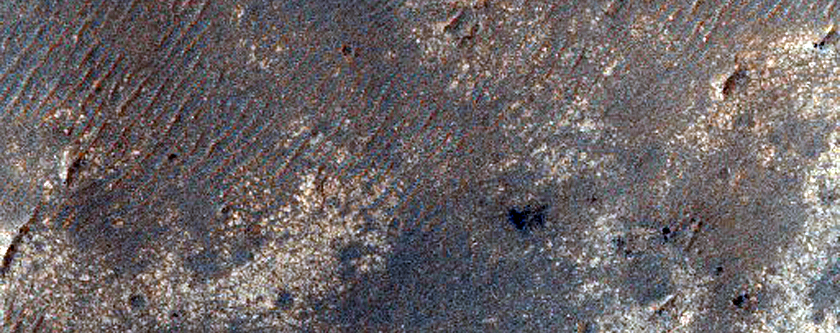 Cratered Region