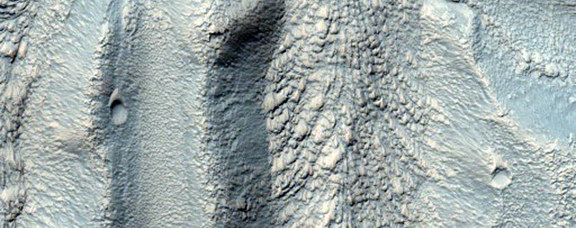 Gullies in the Eastern Hellas Region of Mars