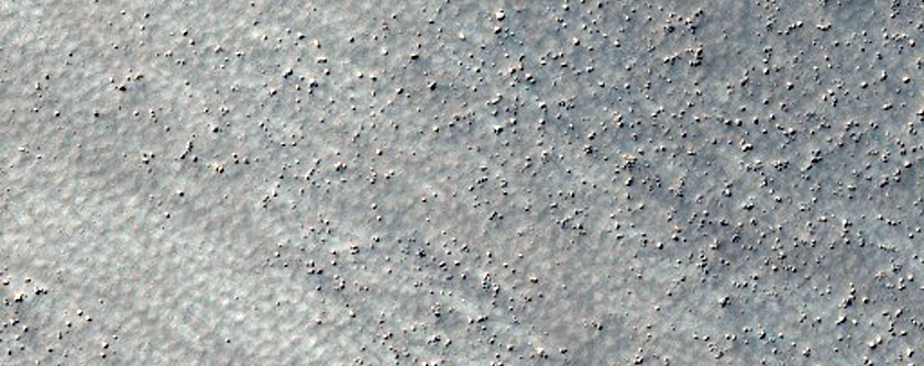 High-Latitude Patterned Ground Sample