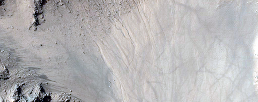 Braided Channels in Central Uplift of Unnamed Crater
