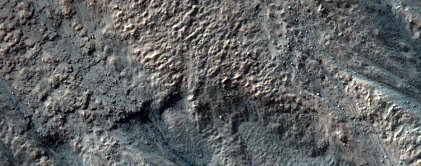 Gullies in Dao Vallis