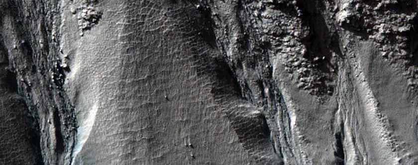 Gullies of Crater Wall in Terra Sirenum