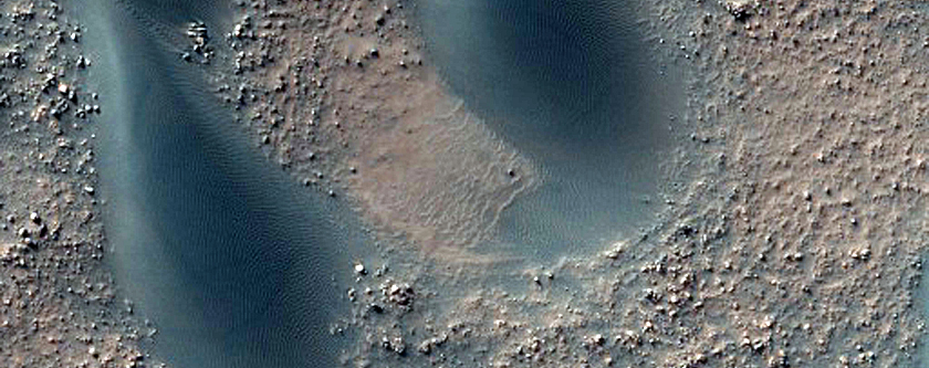 Transitioning Barchan-Barchanoid Dunes