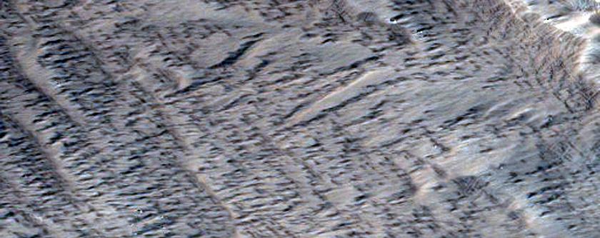 Layers in Gordii Dorsum