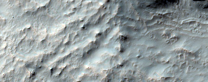 Debris Flows on Mars