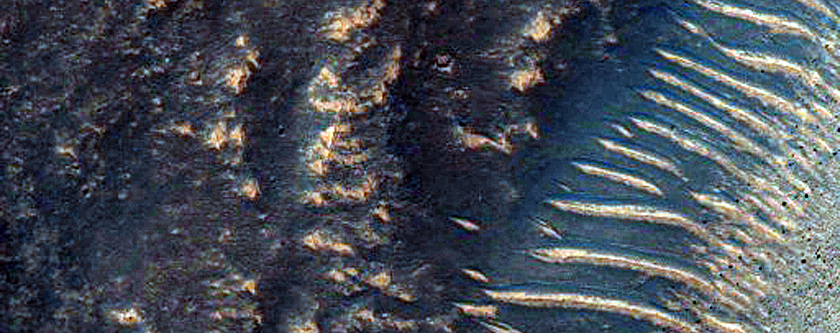 Light-Toned Layers in Noctis Labyrinthus