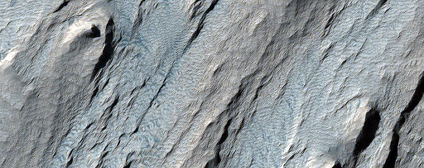 Yardangs in Tithonium Chasma