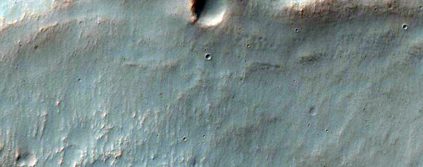 Mid-Latitude Gullies in Crater