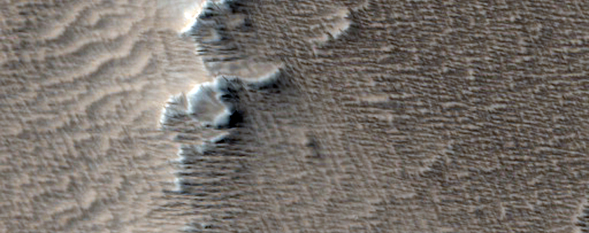 Line of Cones and Associated Flows in Arsia Sulci