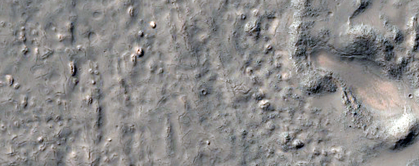 South Mid-Latitude Textured Crater Floor