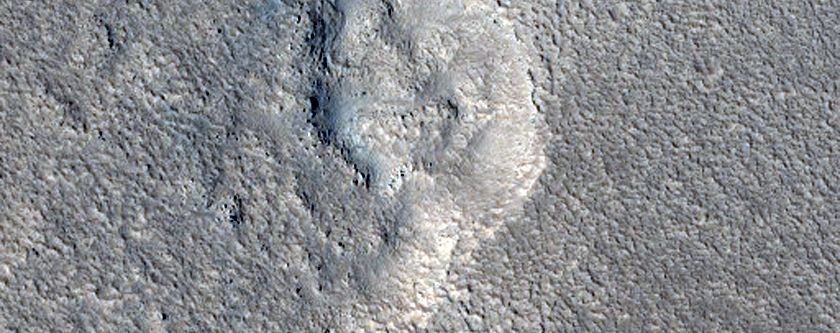 Portion of Large Dark Lobate Feature West of Elysium Rise