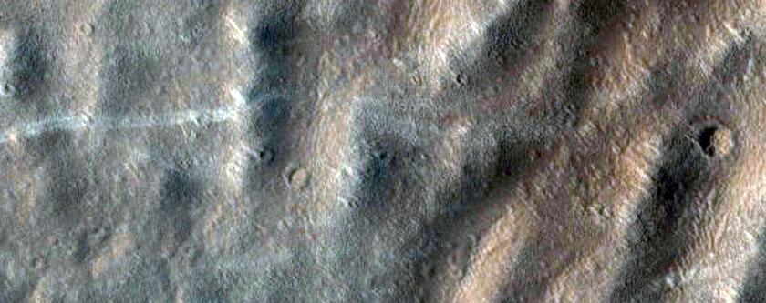 Western Olympus Mons Basal Scarp Ridges