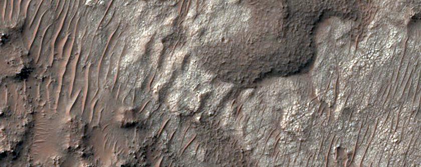 Putative Salt Deposits in Terra Sabaea