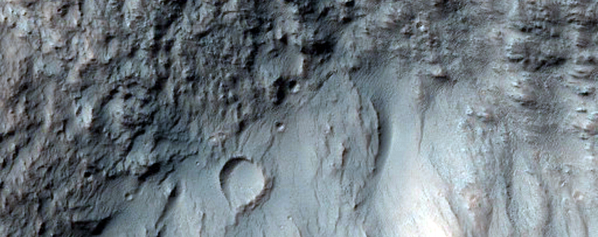 Crater Floor in Terra Sirenum