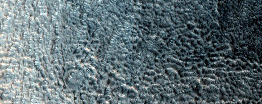 Unusually Large Gullies on Equator-Facing Slope of Crater
