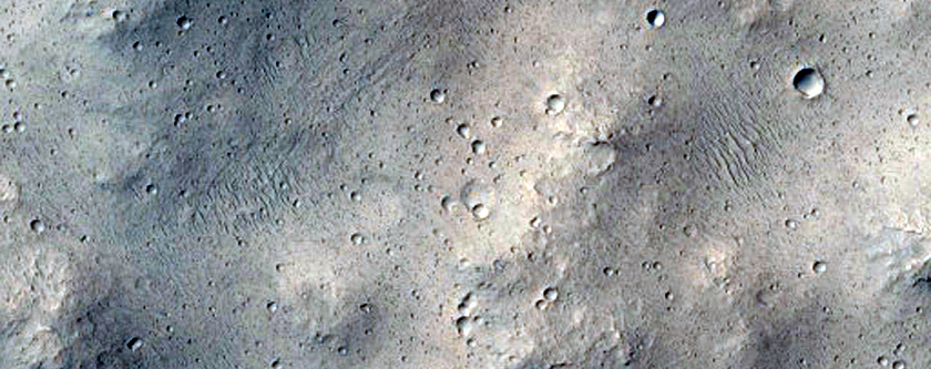 Tributary Mouth in Shalbatana Vallis