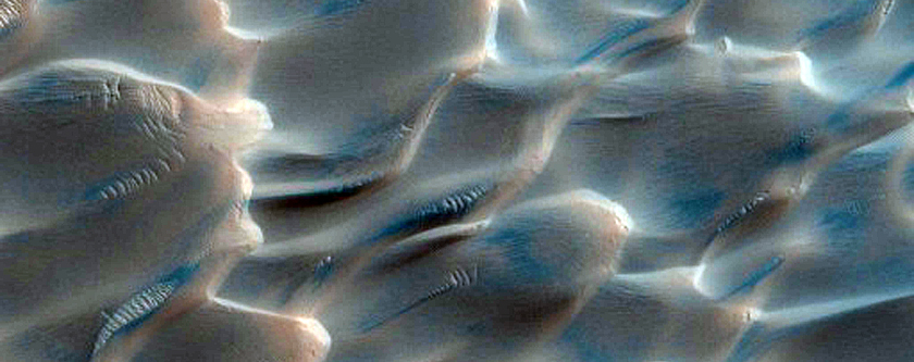 Polygons and Spots on Defrosting Dunes
