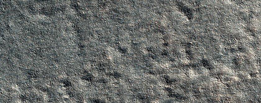 Phoenix Landing Site Frost Observation