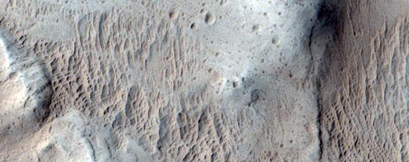 West Olympus Mons