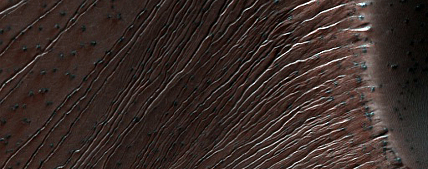 Spring Comes To Dunes >> Hirise Spring Comes Early To The Russell Crater Sand Dunes