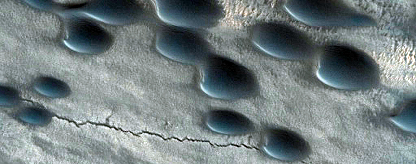 Barchan Dunes in Chasma Boreale