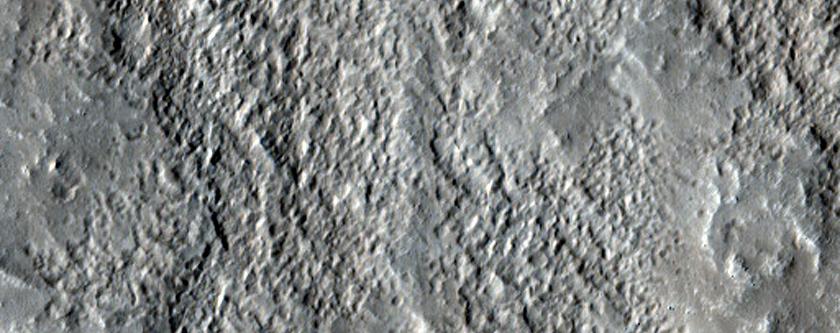 Sample in Mid-Latitudes