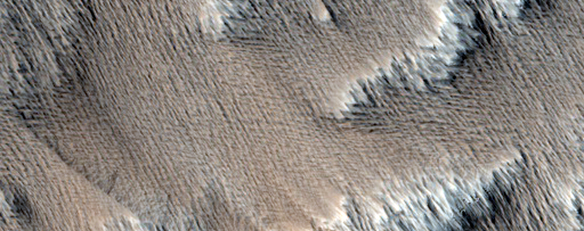 Sample of a Scarp